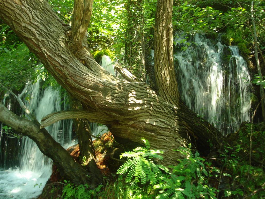 Prachtige omgeving rondom de Cetina rivier