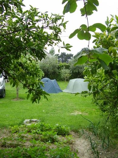 Camping U Dragana in Kastel Kambelovac