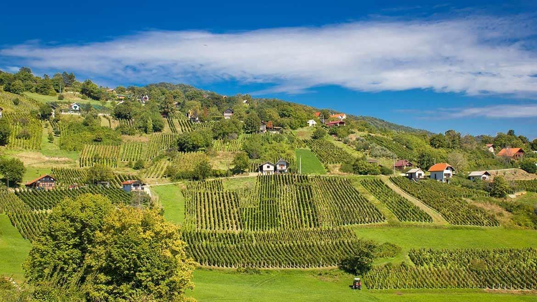 Wijnroutes Hrvatsko Zagorje