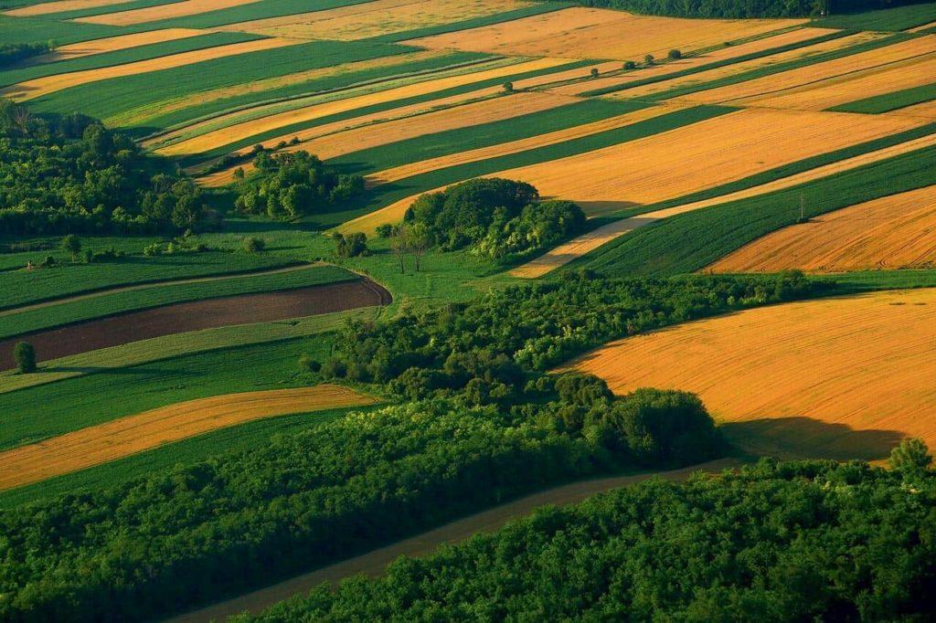 Landschap Slavonie