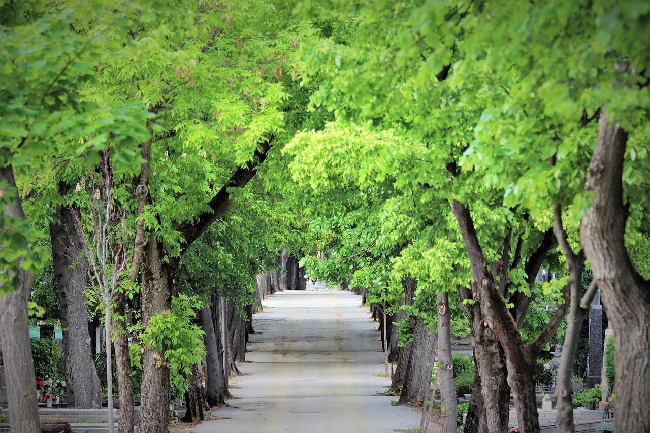 Wandelplad begraafplaats Mirogoj