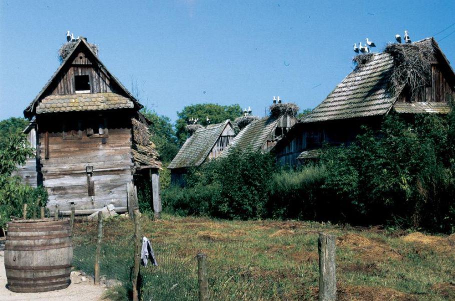 Ooievaarsdorp Kroatie