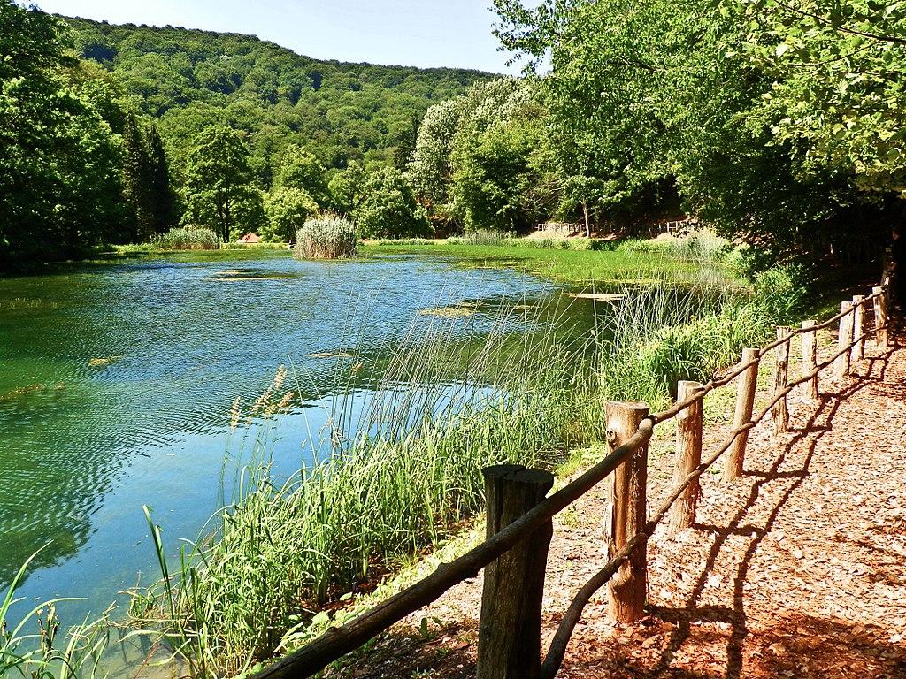 Forest Park Jankovac